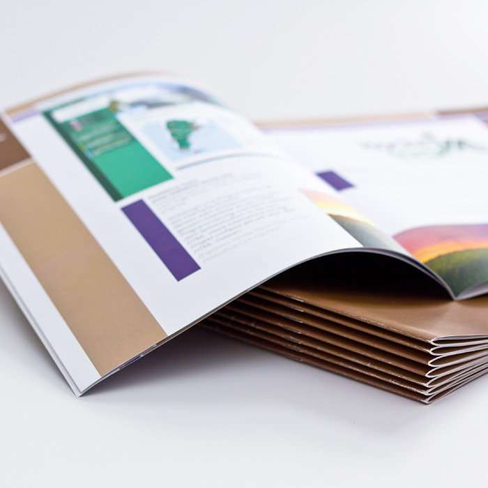 riviste-logo-brand